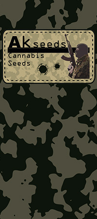 cannabis seeds, akseeds